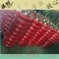 福州廠家船泊輸送紡織皮革聚氨酯PU膠輥 紙巾紙箱印染PU包膠膠輥